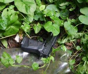 Handgun found amongst plants